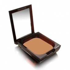 Shiseido Bronzing Powder 002 Oil Free